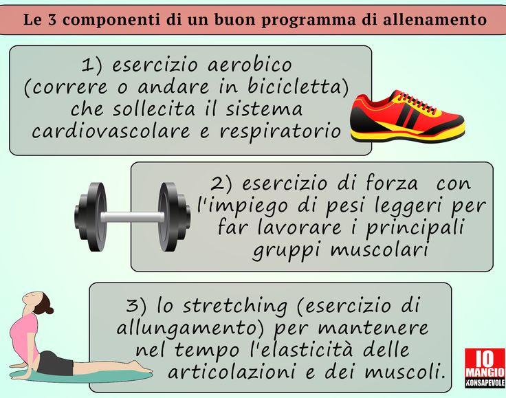 Secondo l'American College of Sports Medicine in ogni programma di attività fisica dovrebbero essere presenti 3 componenti. E' importante che il tipo di attività fisica svolta sia valutata in base alle condizioni di salute del singolo soggetto, al suo grado di allenamento e all'età.  #attivitàfisica #movimento