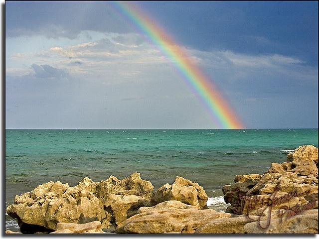 rainbow with polariser filter