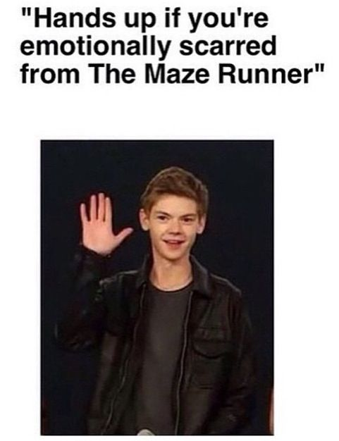 EVERYBODY IS<<<< they're asking this whilst showing a picture of Thomas Brodie Sangster who plays Newt to remind us of the pain