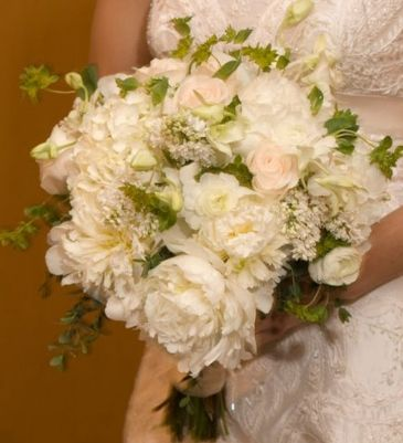 Love this.White Rose, The Bride, Pink Rose
