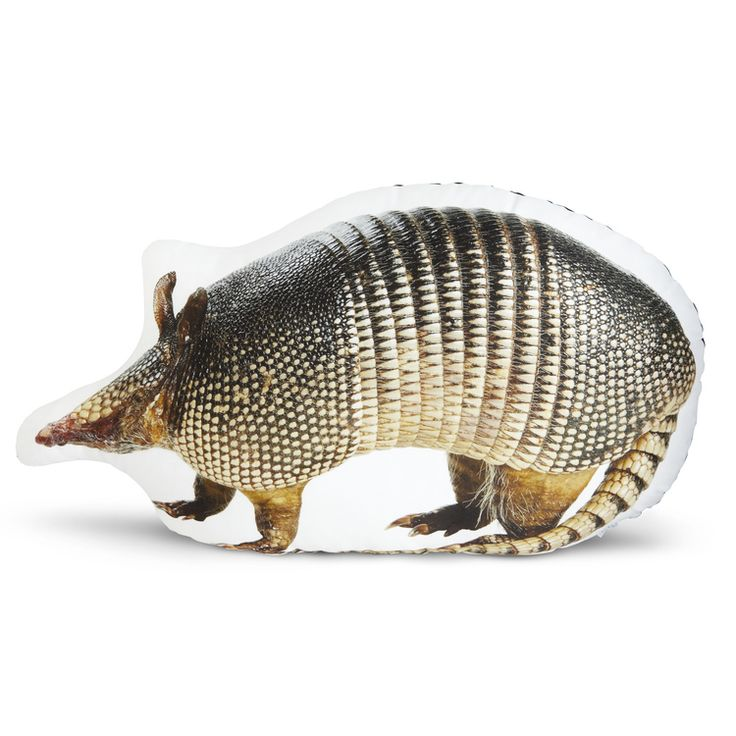 Armadillo toy / pillow | cuddly ♥ toys | Pinterest