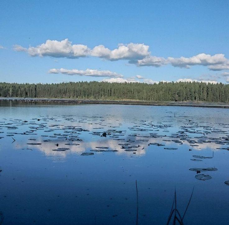 Hamarijärvi, Teijo, Salo