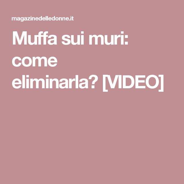 Muffa sui muri: come eliminarla? [VIDEO]