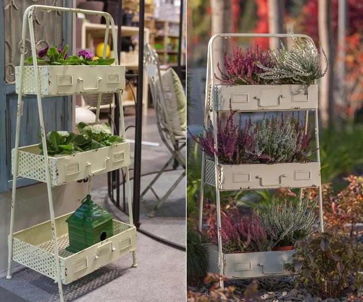 Hallo! Das ist die letzte Chance für Ihren Garten! Bei uns können Sie alles dafür kaufen. Tische, Bänke, Blu̱menbeete, Stuhle, Lampen usw. Hier ist es einen Vorschlag für Blumen. Dieser Post ist nicht für Frauen, sondern für alle Menschen, die Schönheit bevorzugen.  #Chance #Menschen #Schönheit #Stule #Tische #Dekoration #Bänke