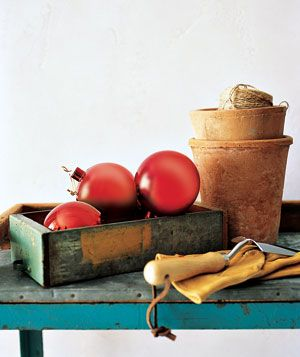 Hang unbreakable red ornaments on tomato plants early in the season. When pesky sparrows or blue jays come to peck, they'll find the hard bulbs (instead of juicy treats) and abandon their attacks by the time the real fruits ripen.