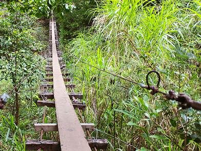Swinging bridges hike maui