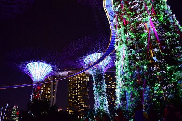 Gardens By The Bay Light Show Best View