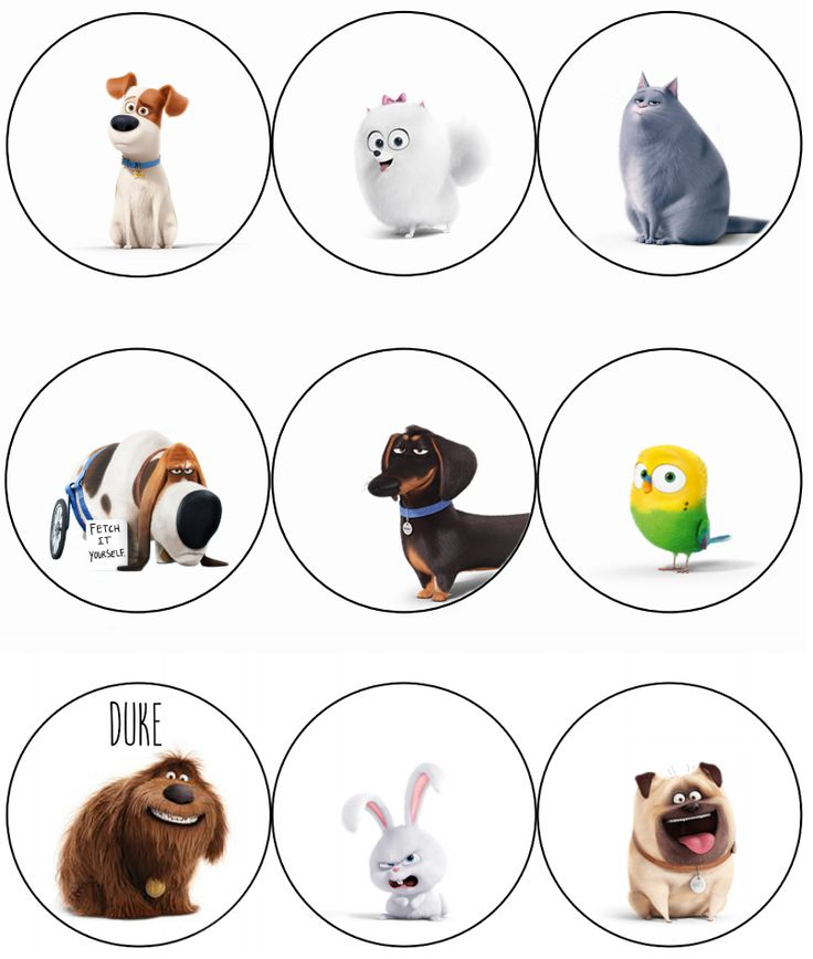 It's just an image of Nerdy Secret Life of Pets Printables