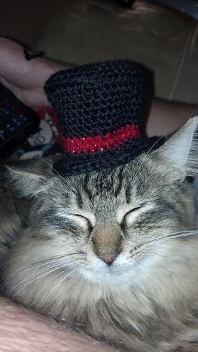 147 best Crochet Mini Hats images on Pinterest | Patrones de ...