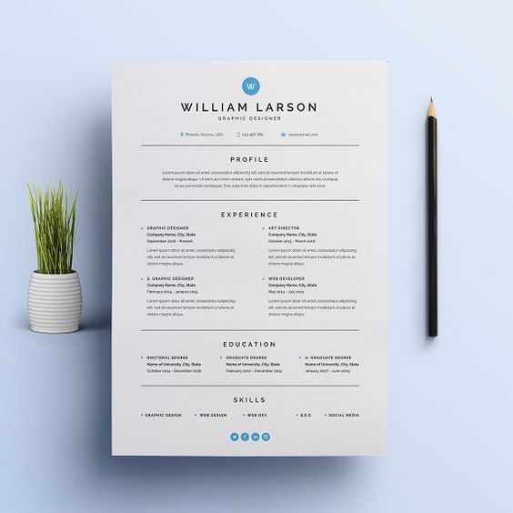 222 best RESUME FORMAT images on Pinterest   Resume ideas  Resume     topresume1   I will write design rewrite a professional resume writing  service for  5 on www