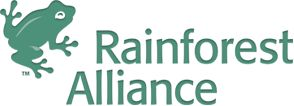 Rainforest Coloring Pages and Activities for Kids | Rainforest Alliance