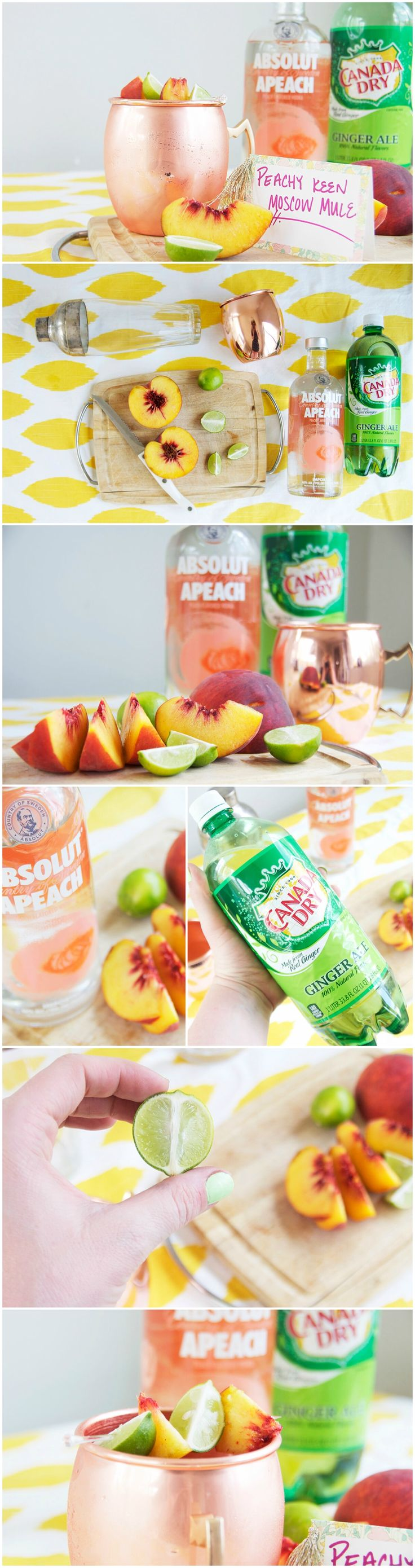 Want a perfectly peachy summer drink? Check out this twist on a classic: A Peach Moscow Mule!