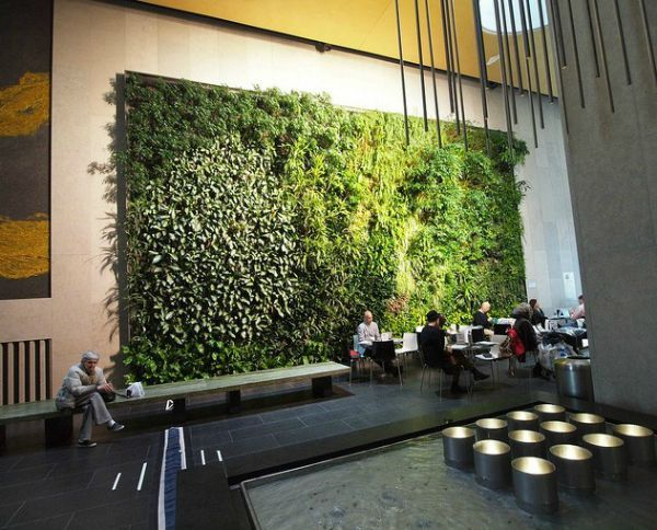 1000 images about living walls vertical gardening on for Living walls vertical gardens