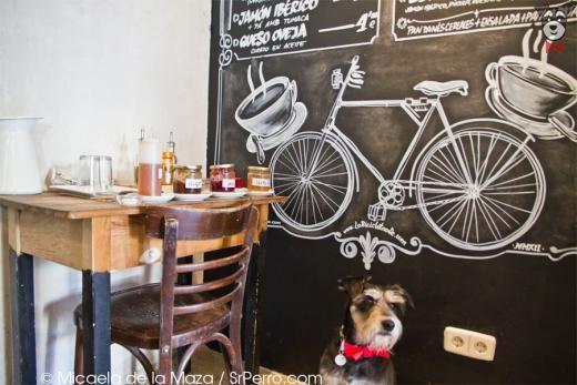 La Bicicleta Cycling Cafe & Workplace Madrid | SrPerro.com