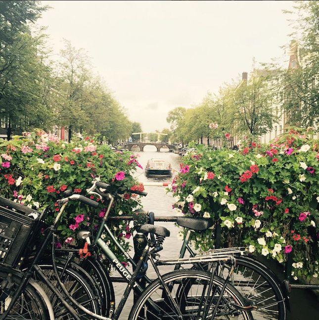 Dicas de viagem em família ou lua de mel para Amsterdam, na Holanda. Hotéis, museus, pontos turísticos e mais.