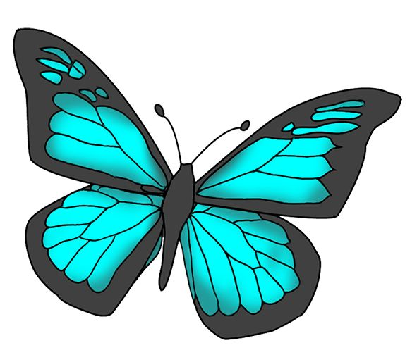 Butterflies cartoon butterfly clipart butterfly - Clipartix