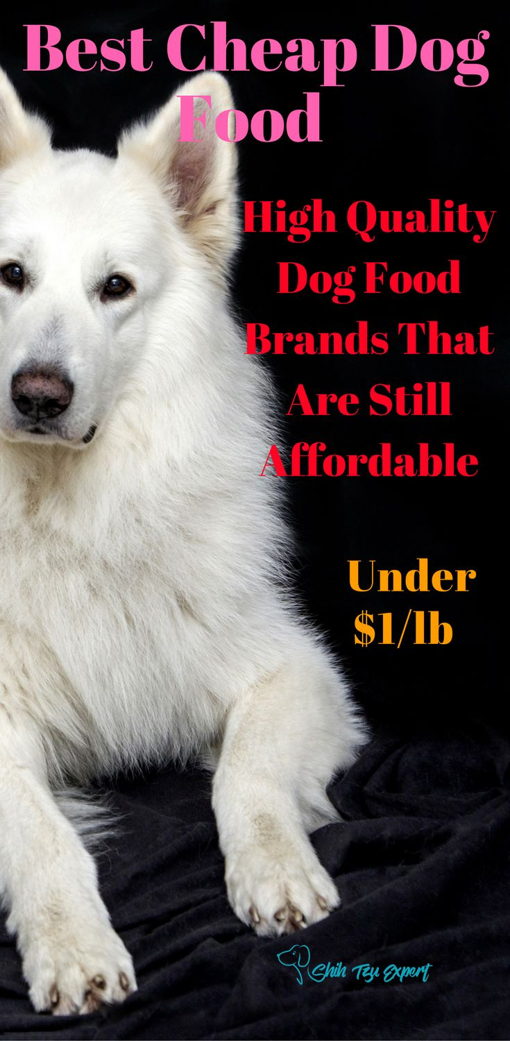High Quality Dog Food Brands That Are Still Cheap