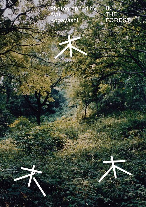 Japanese Poster: In the Forest. Motoi Shito. 2014