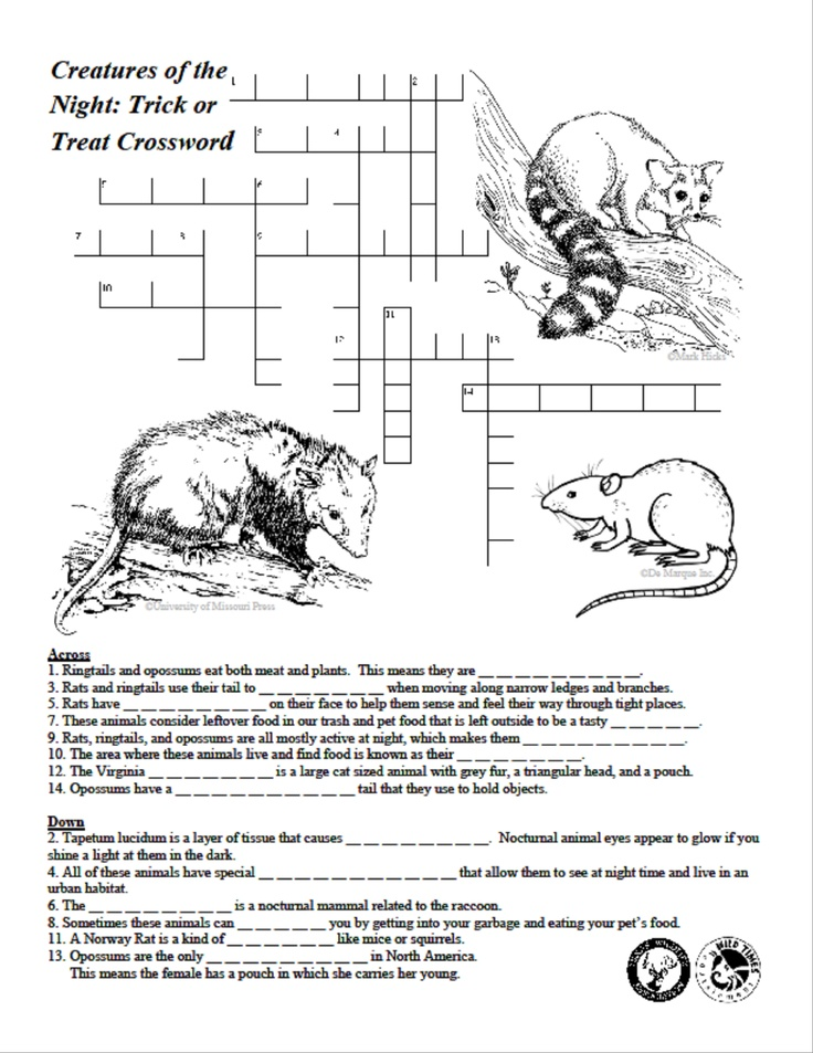 creatures of the night crossword puzzle texas wildlife association activities lessons. Black Bedroom Furniture Sets. Home Design Ideas