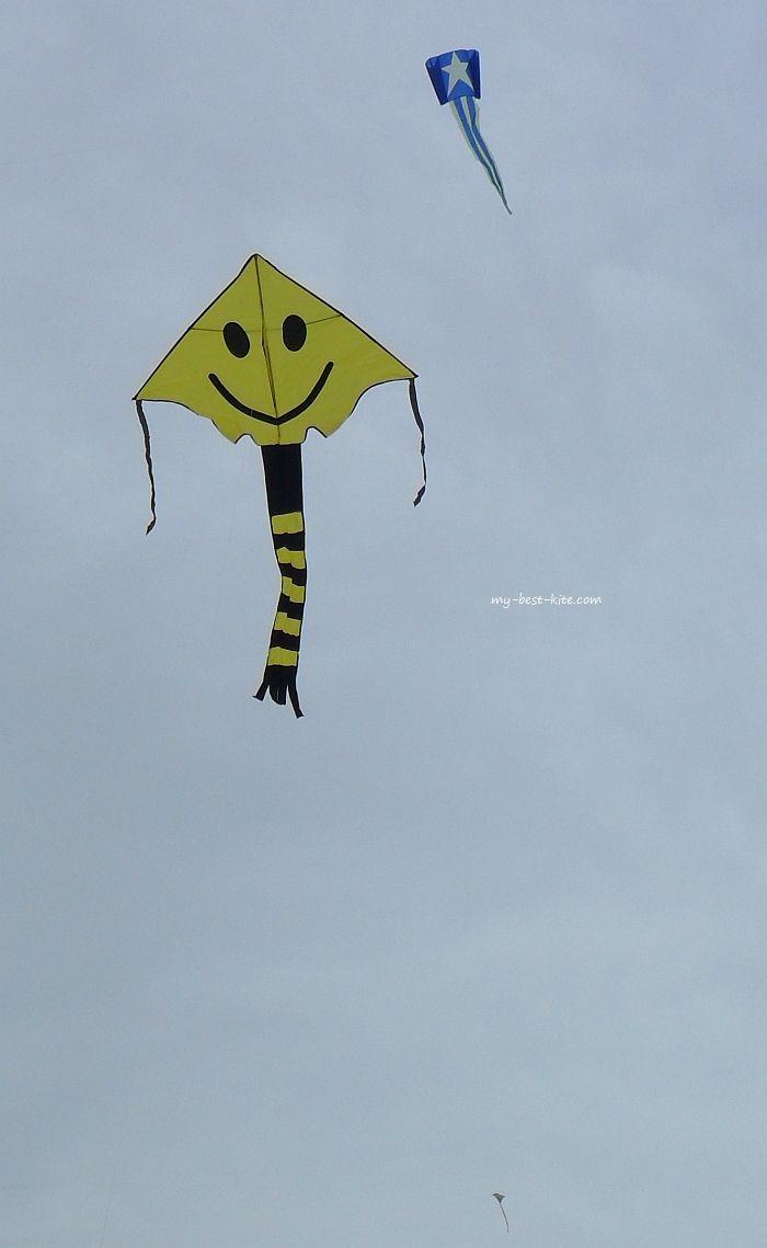 397 best barriletes images on pinterest kites kite flying and a