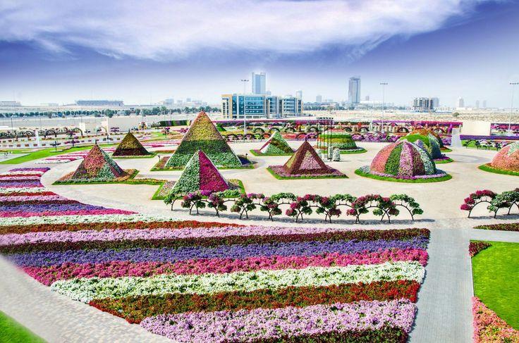 dubai-flower-garden-3