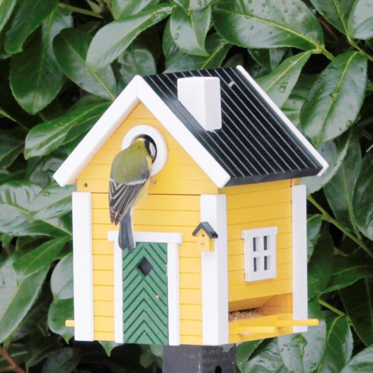 Yellow Cottage birdfeeder that cleverly converts into a nesting box.jpg (900×900)