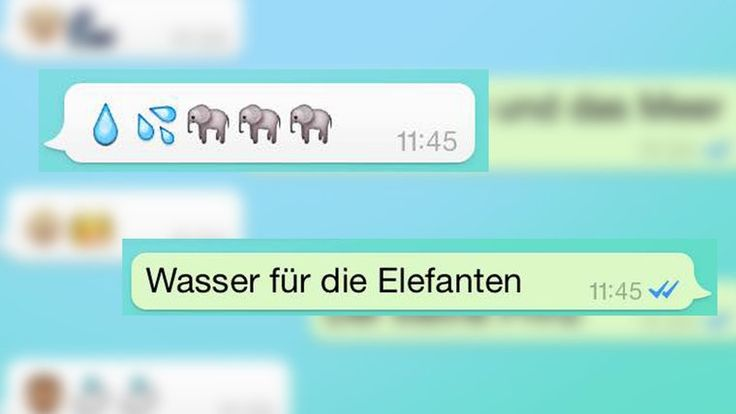 """Montage: In einem Smartphone steht """"Wasser für die Elefanten""""."""