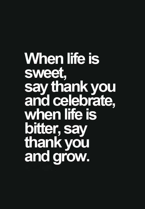*See more Quotes* https://www.pinterest.com/LorenzDuremdes/quotes/ @LorenzDuremdes #Life #Celebrate #Grow