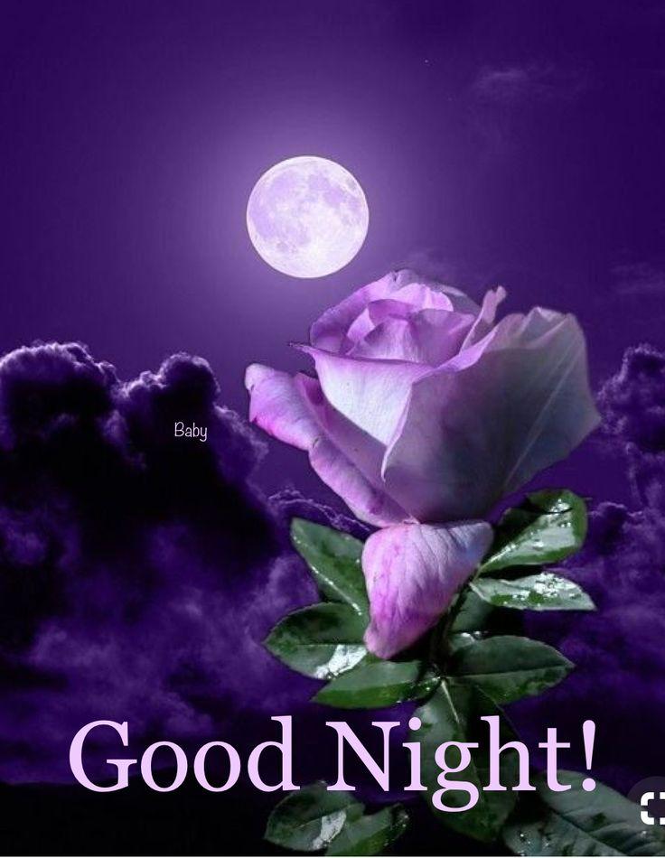Good Night Beautiful Moon Moon Flower Beautiful Roses