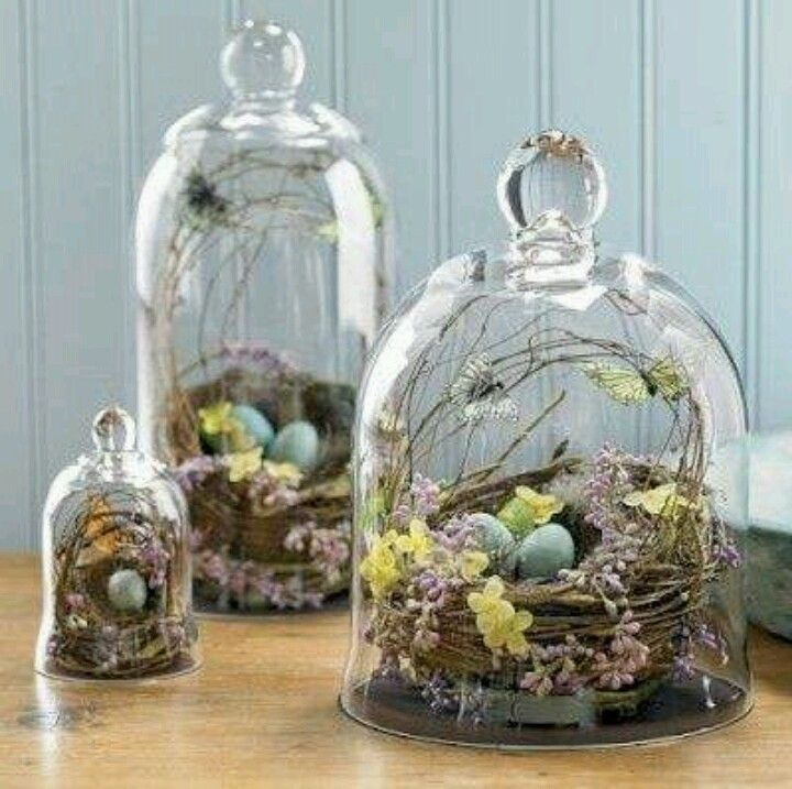 Bird nest decor without glass is nice too