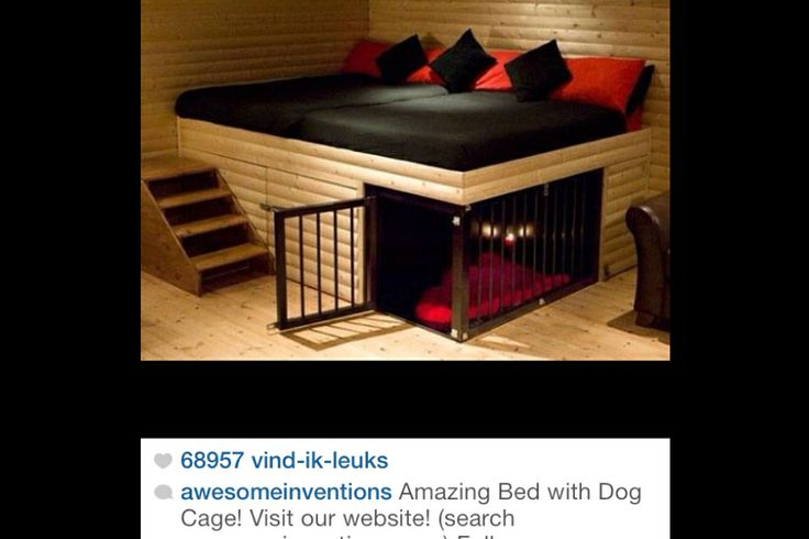 Dog Bed Inside Dog Cage