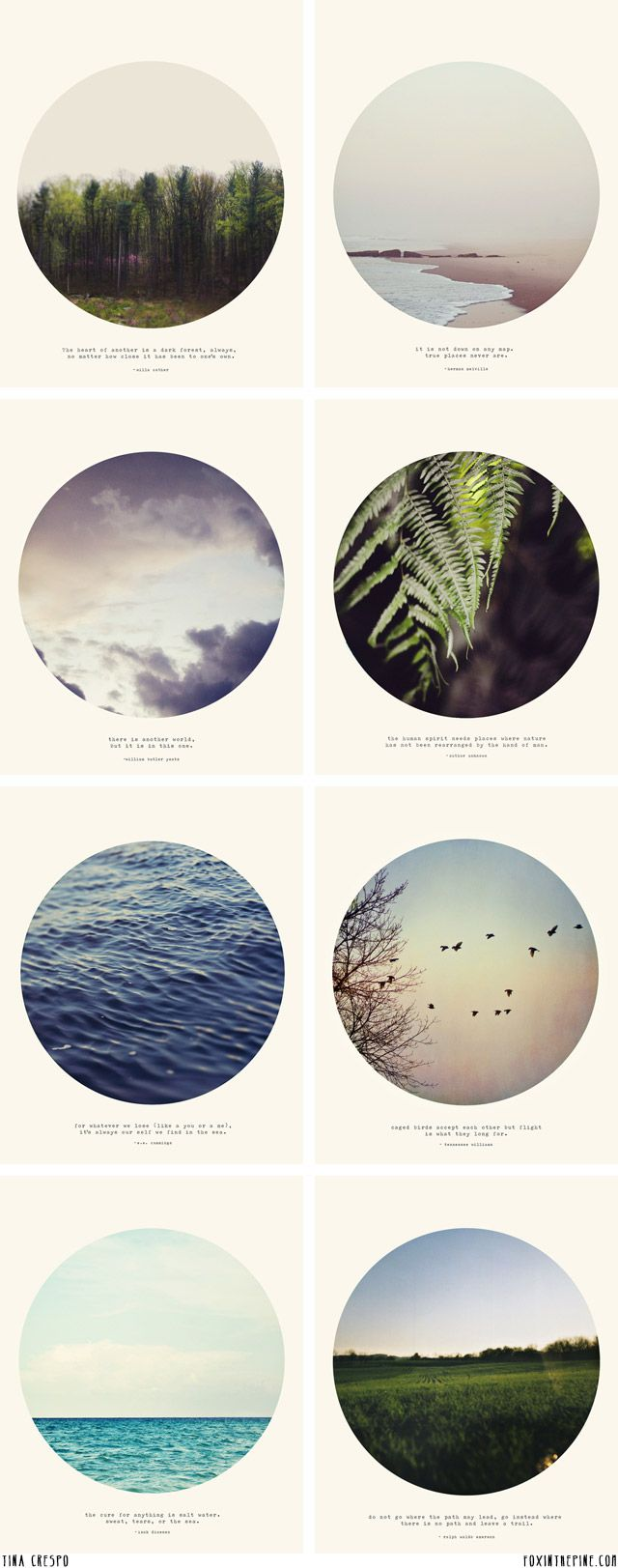 Tina Crespo nature prints   //   FOXINTHEPINE.COM