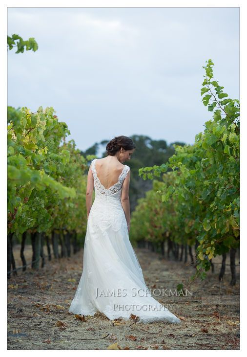 Wise Wines, Busselton, WA.   Beautiful Busselton winery wedding.