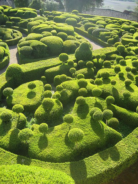 The Gardens of Marqueyssac can be found at Vézac, France. Today listed as one of the country's National Historical Monuments, this stunning site is home to over 150,000 hand-pruned boxwood trees carved into weird and wonderful shapes!