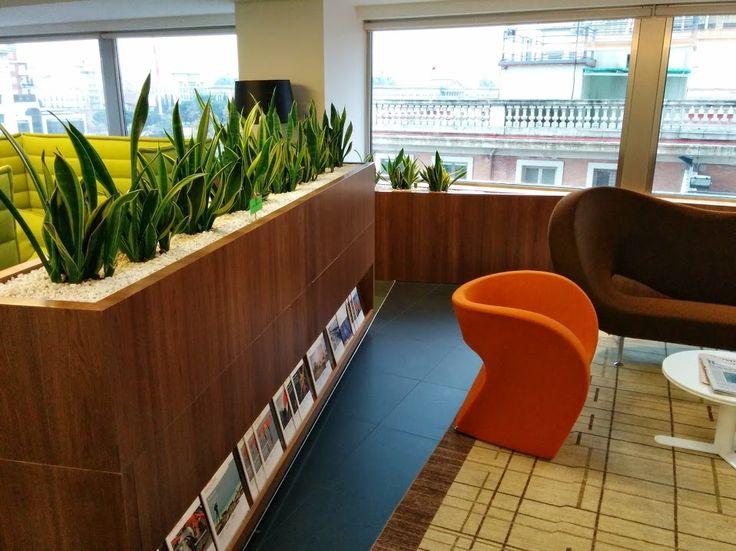 Alijardin paisajismo en interior de oficina en paseo de - Paisajismo madrid ...