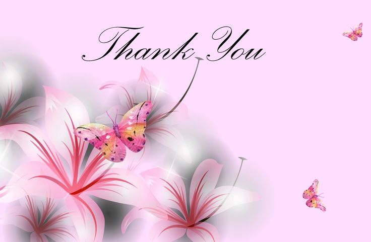 Thank You U With Pink Butterfly Hd Wallpaper Pics Image