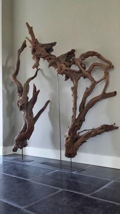 Hout object, uniek hout uit Nieuw Zeeland.