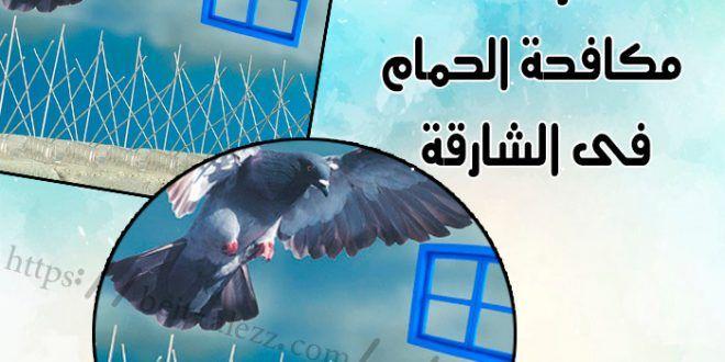 شركات مكافحة الحمام في الشارقة Sharjah Poster Movie Posters
