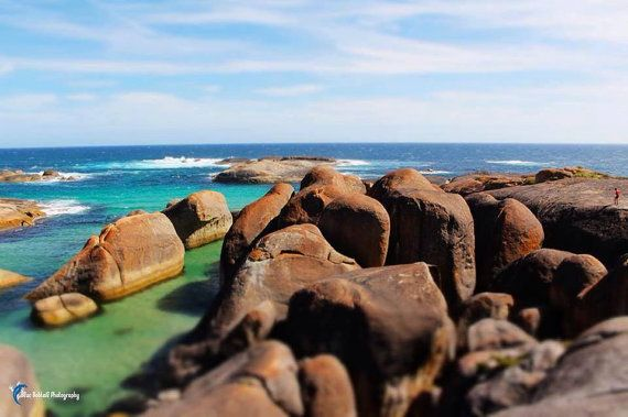 Canvas photography wall art Australia Elephant by BlueBobtail, $100.00