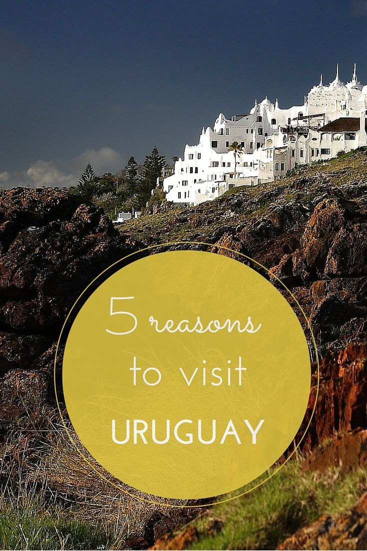 Uruguay needs to be your next destination. The food, the people, the culture... don't miss out on this amazing country the next time you travel to South America. Check out our reasons not to overlook Uruguay!