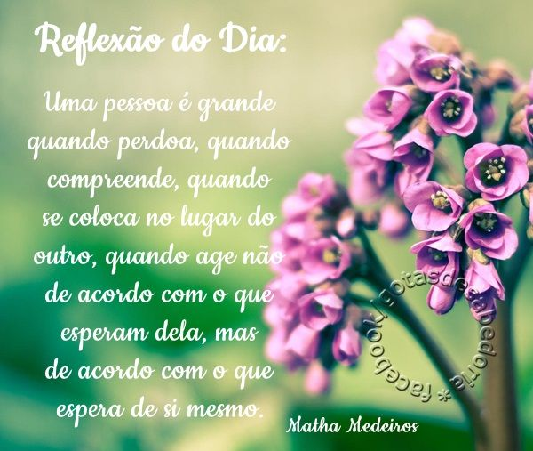 https://www.facebook.com/gotasdesabedoriaaa