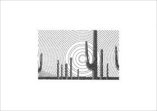 dibujo con lineas curvas