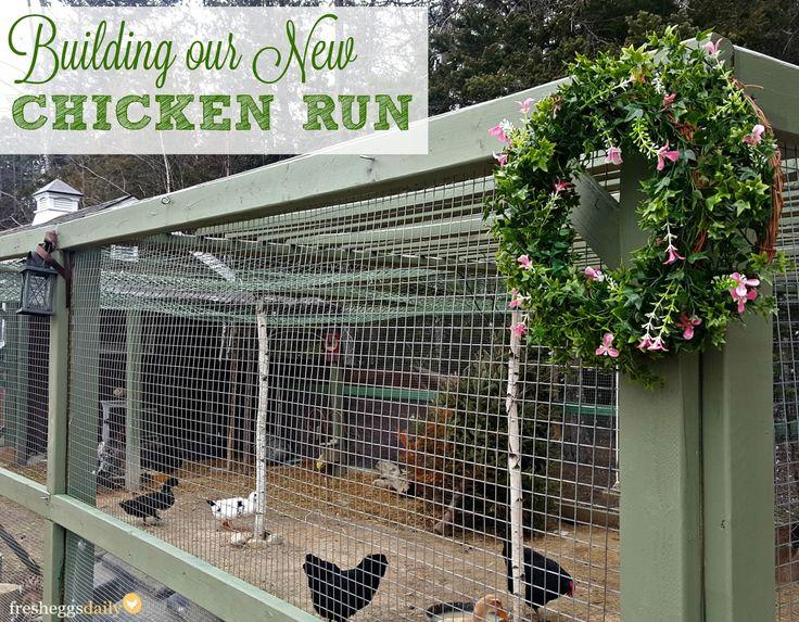 Building a Predator-Proof Chicken Run   Fresh Eggs Daily®