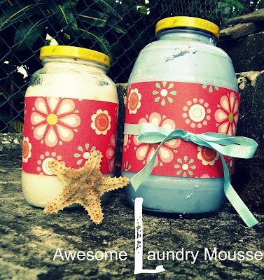 Homemade Laundry Mousse