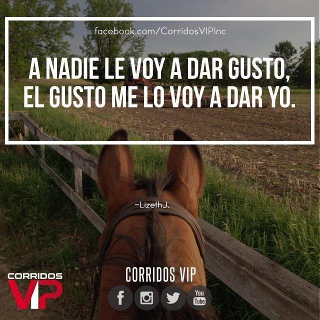 El gusto me lo doy yo.!   ____________________ #teamcorridosvip #corridosvip #quotes #frasesvip