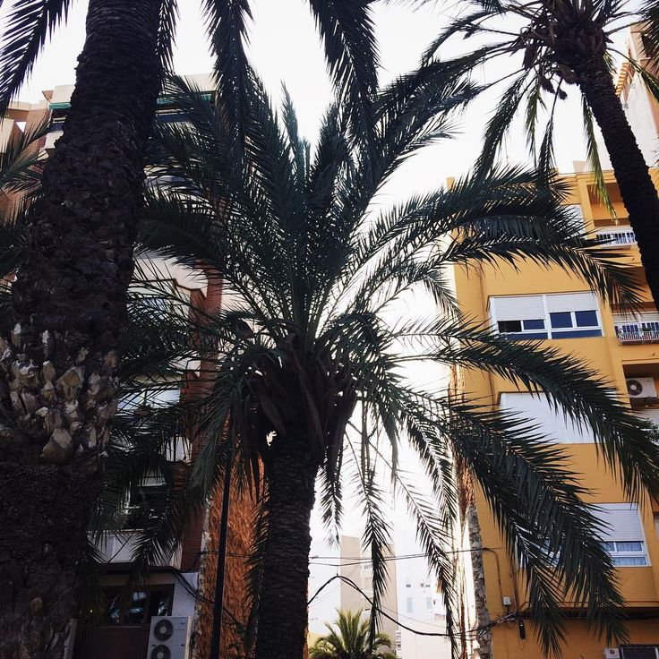 Karla Baltaceanu (@karlabaltaceanu) on Instagram  #Regram via @karlabaltaceanu