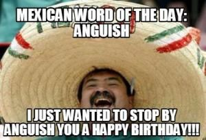 Mexican word of the day:  Anguish  I just wanted to stop by anguish you a happy birthday!!!