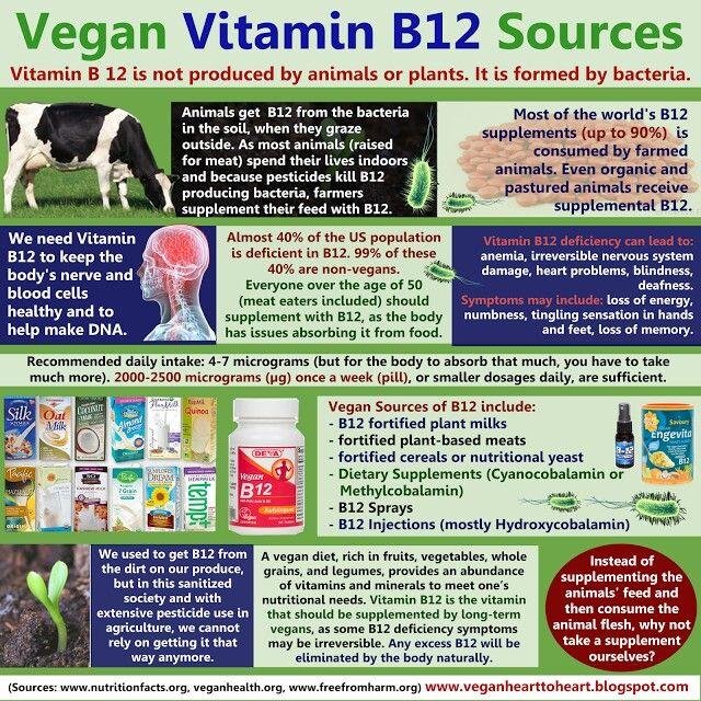 Vegan B12 Sources Vegan vitamins, Vegan b12 sources