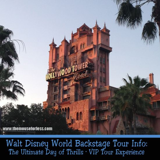 Special Tours that you can take at Disney World!  These are great ... especially if you've been to the parks multiple times and would like to do something new.  We've done several and look forward to doing more!