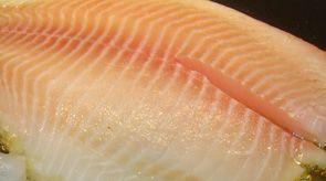 30 best lombardi 39 s seafood images on pinterest fresh for Fresh fish market orlando